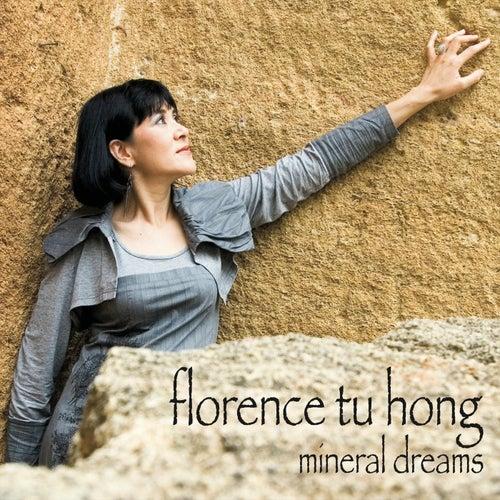 Mineral Dreams de Florence Tu Hong