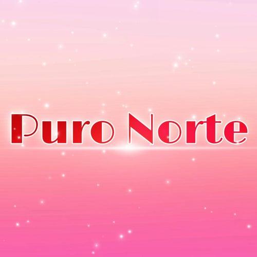 Puro Norte de Marco Arenas Calderón