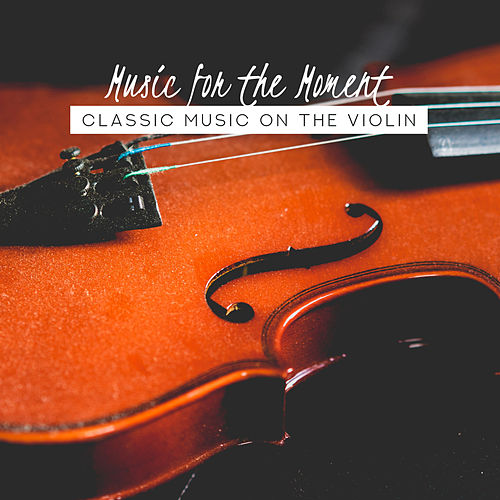 Music for the Moment: Classic Music on the Violin de Various Artists
