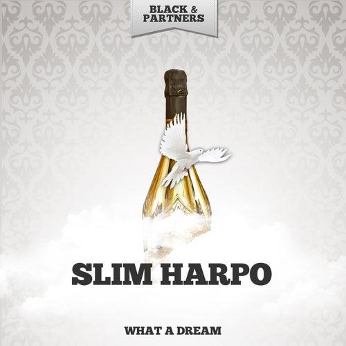 What A Dream de Slim Harpo