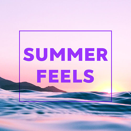 Summer Feels by Various Artists