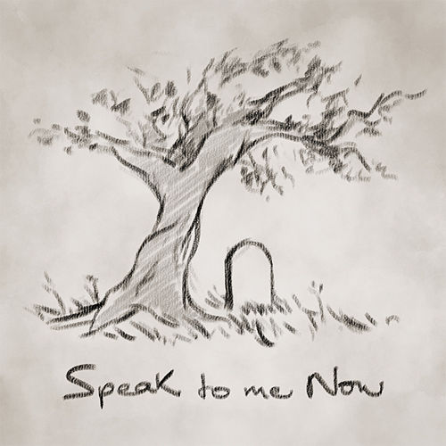 Speak To Me Now by No Thirteen Claps