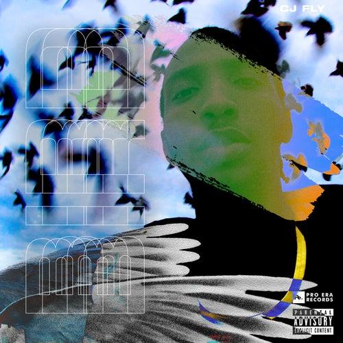 Bird by CJ Fly