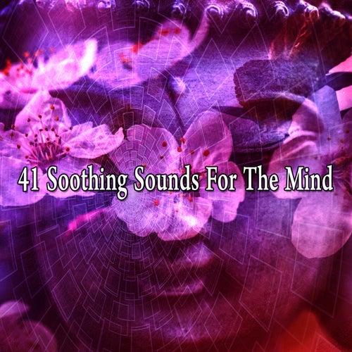 41 Soothing Sounds for the Mind de Meditación Música Ambiente