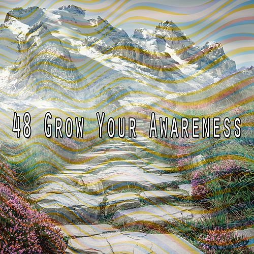 48 Grow Your Awareness by Asian Traditional Music