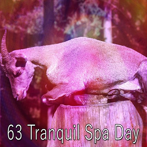 63 Tranquil Spa Day de Lullaby Land