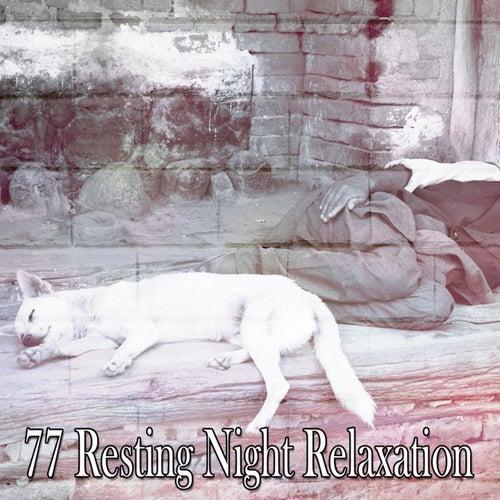 77 Resting Night Relaxation de Relajacion Del Mar