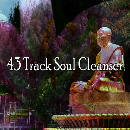 43 Track Soul Cleanser by Yoga Tribe