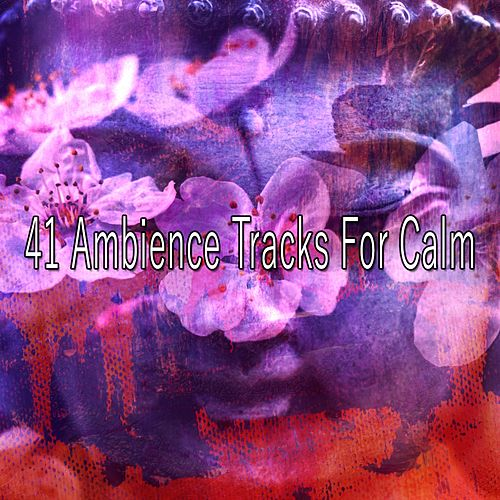 41 Ambience Tracks for Calm von Entspannungsmusik