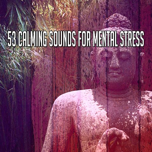53 Calming Sounds for Mental Stress de Musica Relajante