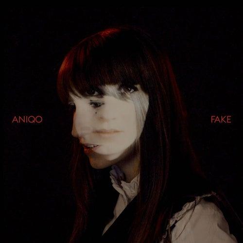 Fake von Aniqo