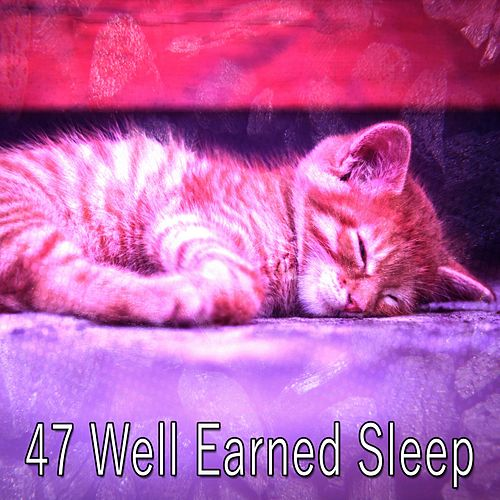 47 Well Earned Sleep by Relaxing Spa Music