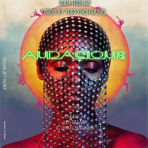 Audacious by Sean Terrow