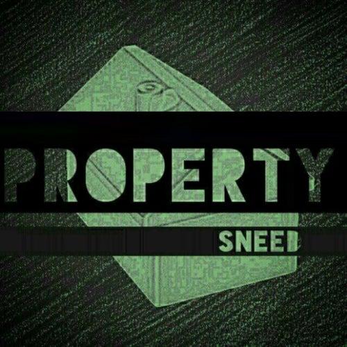 Property de Sneed