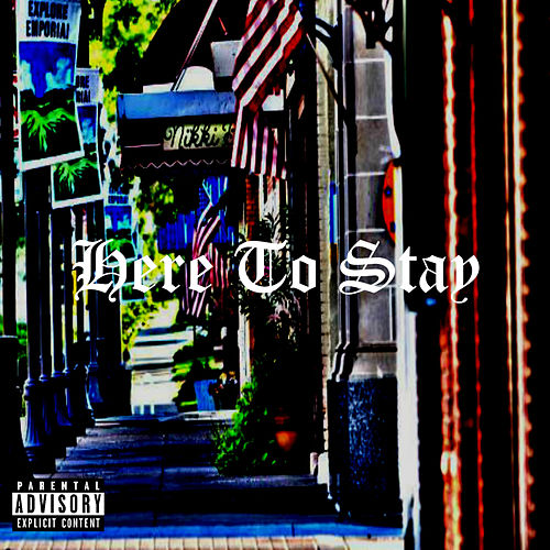 Here to Stay by DG