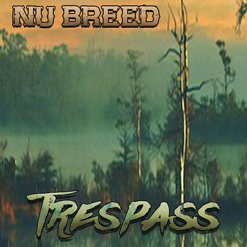 Trespass by Ying Yang Twins