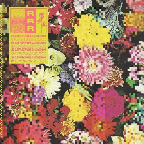 Flowers von Ra Ra Riot