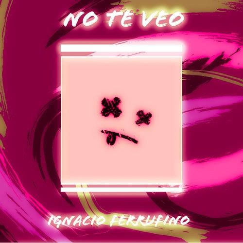No Te Veo (Cover Version) de Ignacio Ferrufino