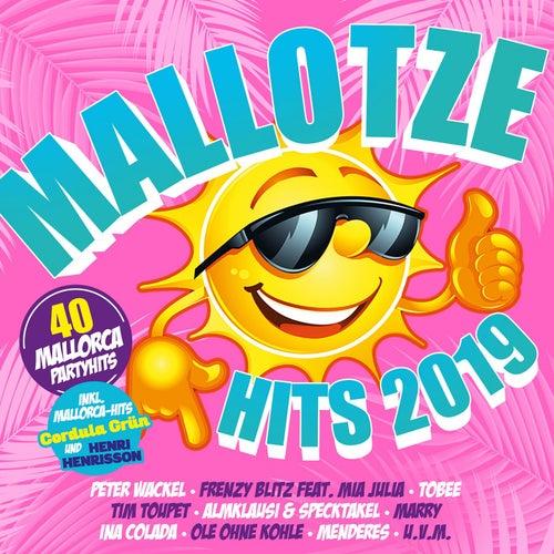 Mallotze Hits 2019 von Various Artists