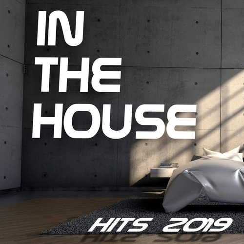 In the House Hits 2019 von Various Artists