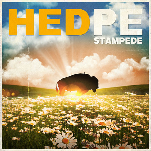 Stampede by (hed) pe