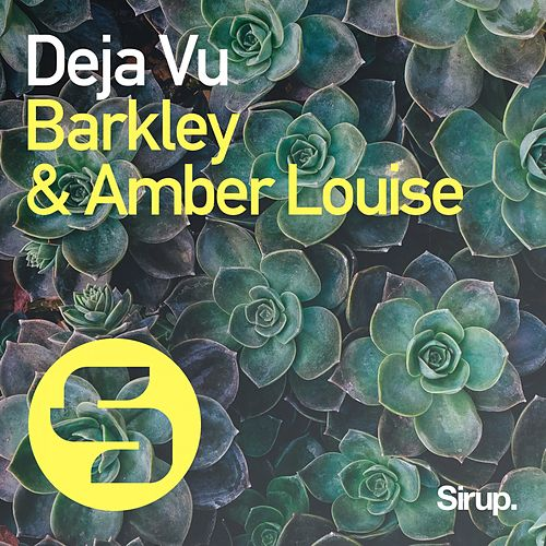 Deja Vu by Barkley
