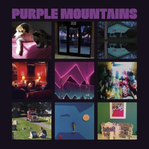 Purple Mountains de Purple Mountains
