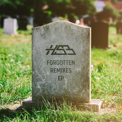 Forgotten Remixes EP von The Holy Santa Barbara