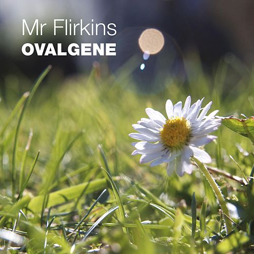 Ovalgene by Mr Flirkins