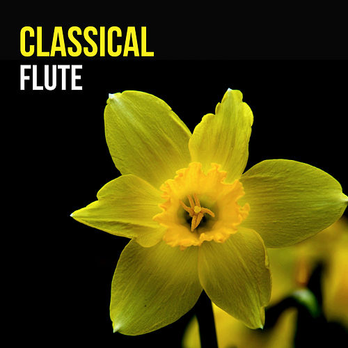 Classical Flute by Various Artists