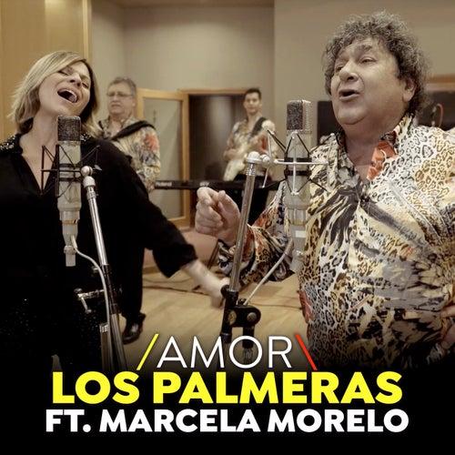 Amor (Single) de Los Palmeras