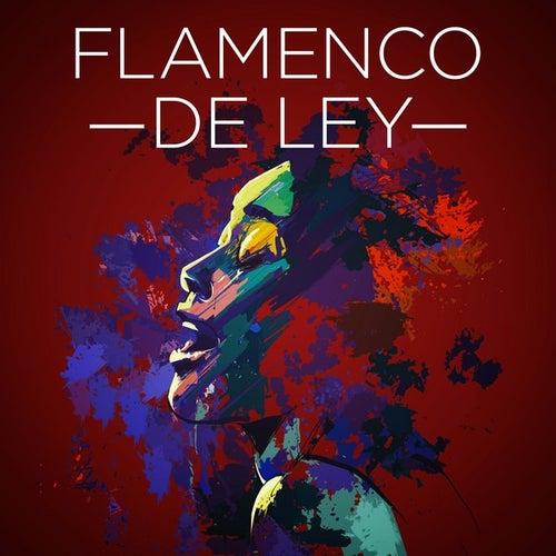 Flamenco de ley de Various Artists