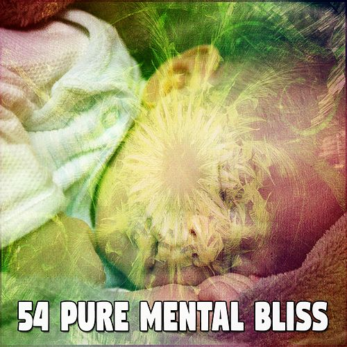 54 Pure Mental Bliss von Best Relaxing SPA Music