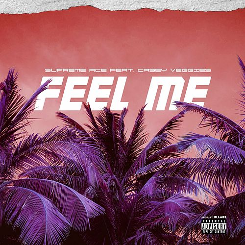 Feel Me (feat. Casey Veggies) by Supreme Ace