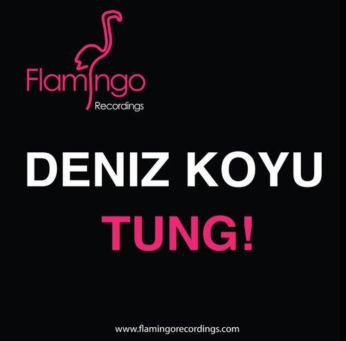 Tung! von Deniz Koyu
