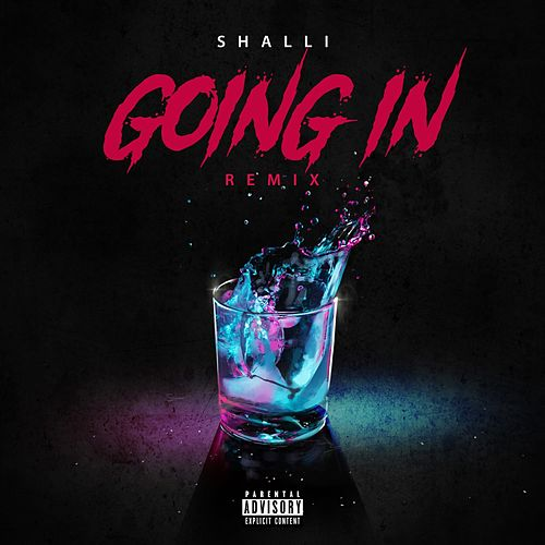 Going In (Remixes) by Shalli