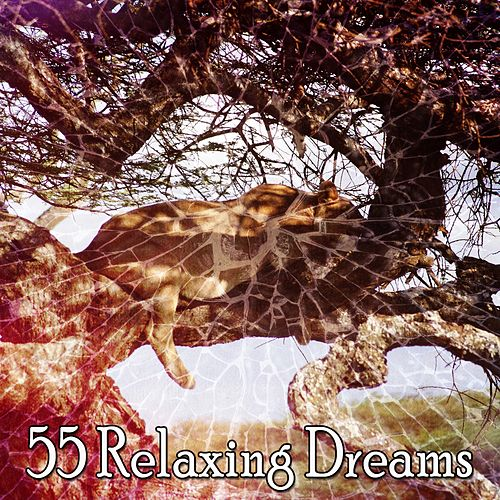 55 Relaxing Dreams von Best Relaxing SPA Music