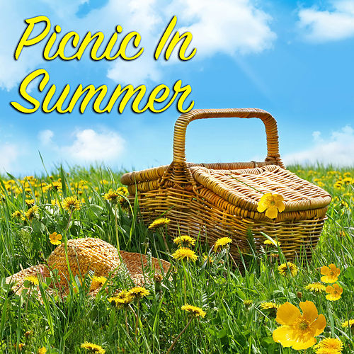 Picnic In Summer de Various Artists