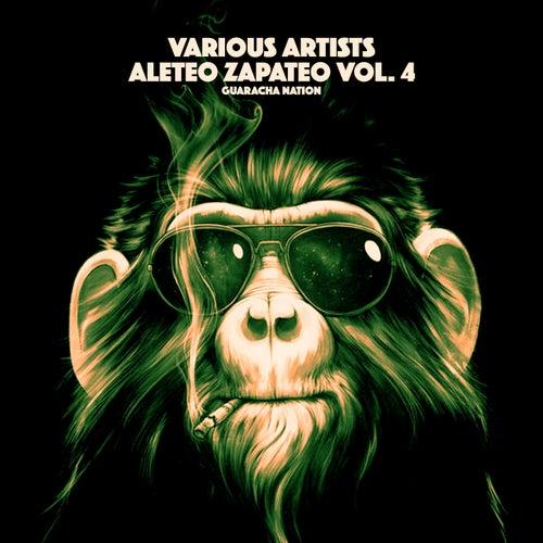 Aleteo Zapateo, Vol. 4 - Single de Various Artists