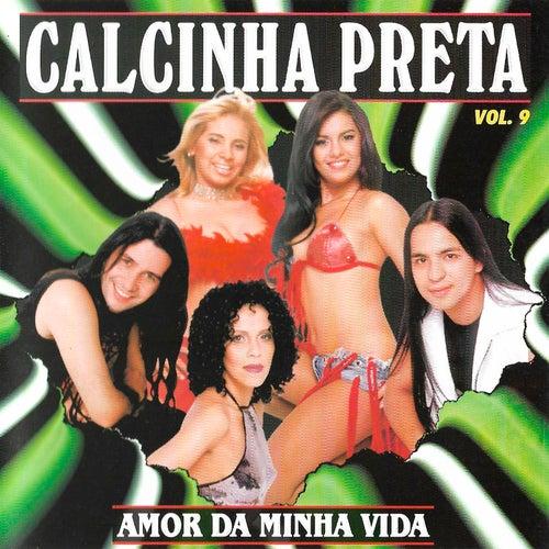Amor da Minha Vida - Vol. 9 by Calcinha Preta
