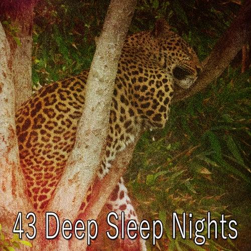 43 Deep Sleep Nights by White Noise For Baby Sleep