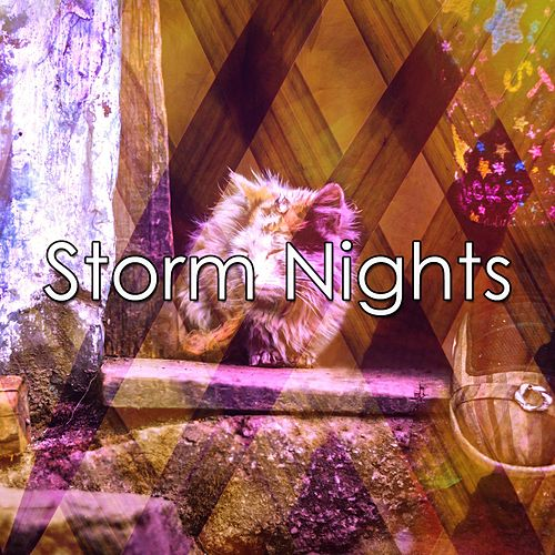 Storm Nights by Relaxing Rain Sounds