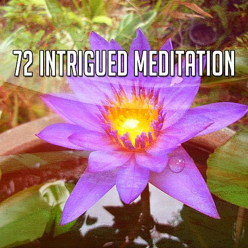 72 Intrigued Meditation de Massage Tribe