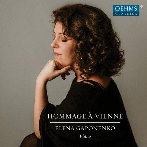 Hommage à Vienne de Elena Gaponenko