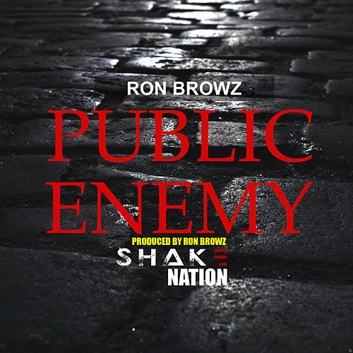 Public Enemy von Shake Nation