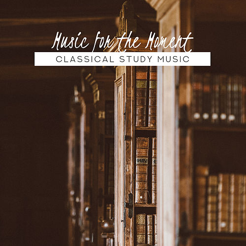 Music for the Moment: Classical Study Music de Various Artists