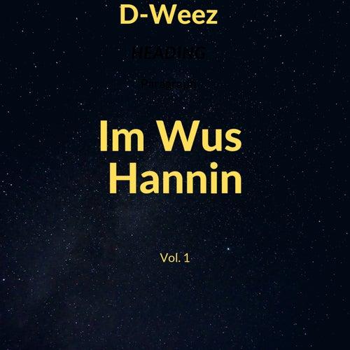 Im Wus Hannin, Vol. 1 by Dweez