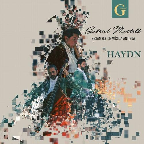 Haydn by Gabriel Martell