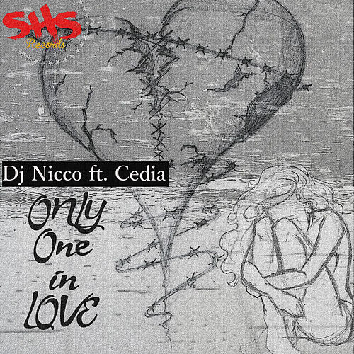 Only One in Love van DJ Nicco