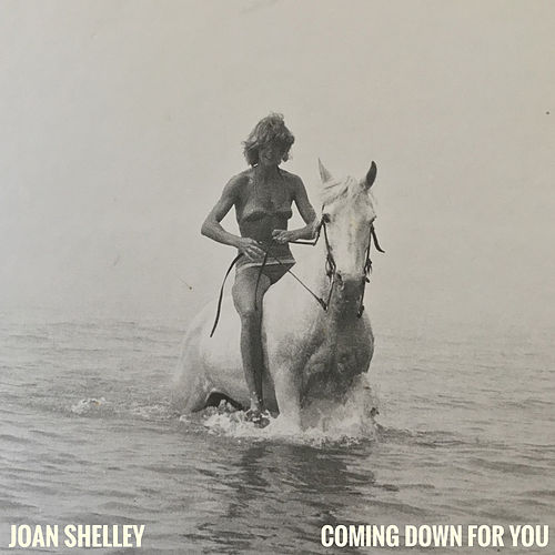 Coming Down For You by Joan Shelley